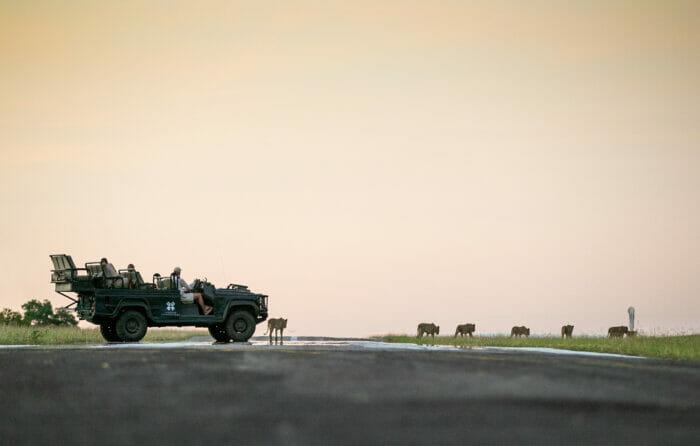 Ntsevu Lion Airstrip Land Rover