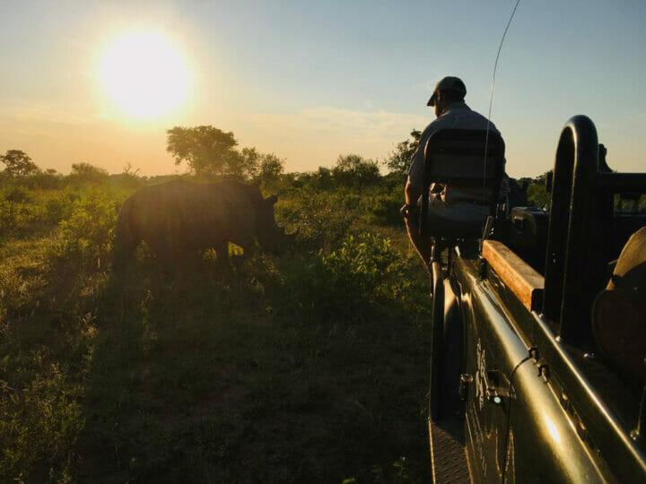 Tracker Up Close Rhino