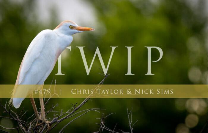 Twip 479