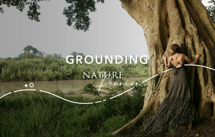 Nature Reunion Grounding