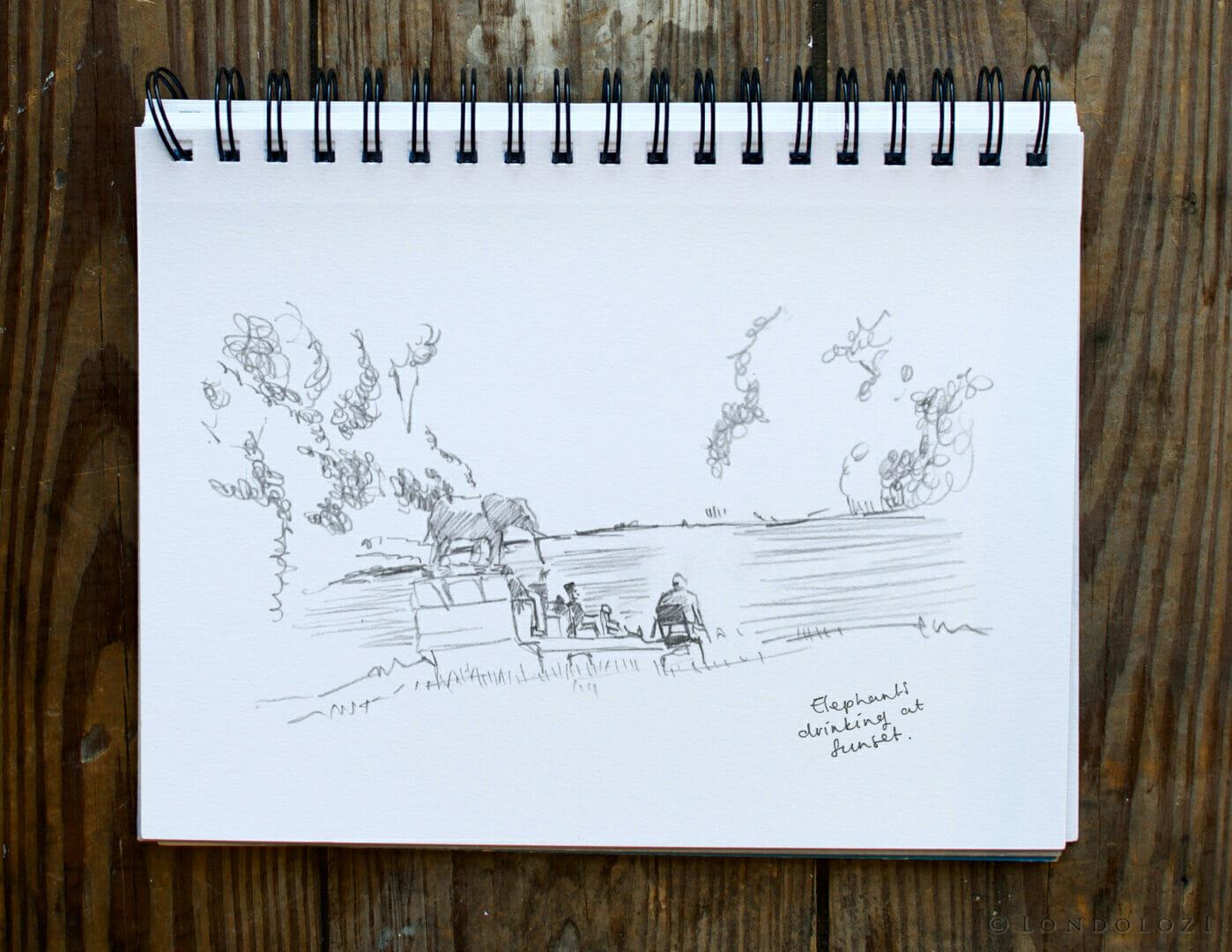 Sketch Elephants Rb