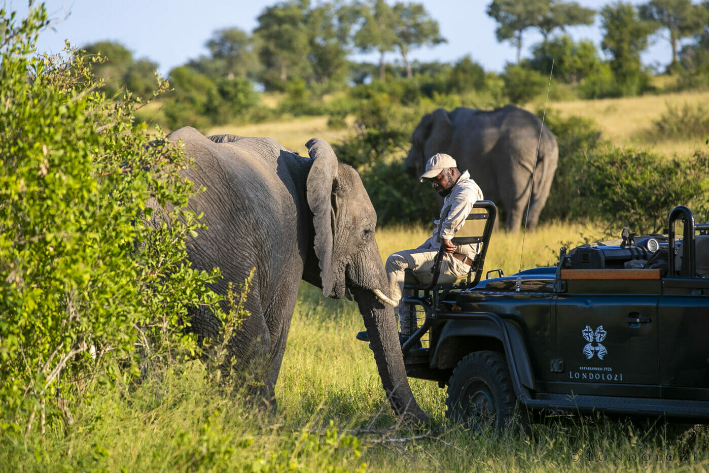Elephant Tracker Richard M Land Rover