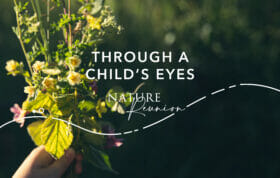 Nr Through A Childs Eyes