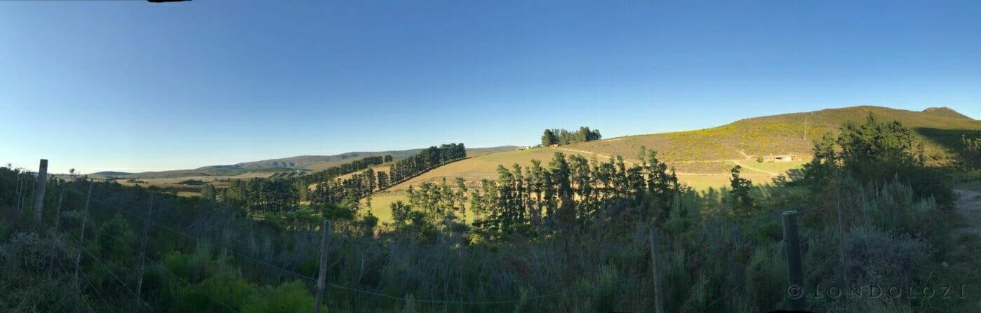 View over Sondagskloof from the vineyards of Hermanuspietersfontein.