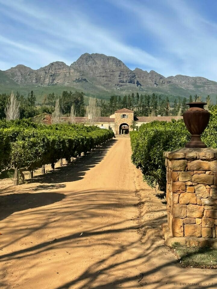 The impressive entrance to Waterford Wine Estate.