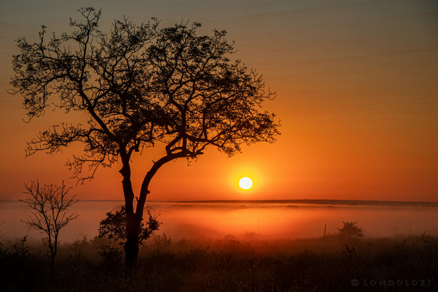 Sunrise – Dean de la Rey - Probably… actually, the most beautiful scene I've witnessed on a morning in my time here. This unbelievable misty morning created a contrast to most impressive sun ris...