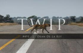 Dean Twip