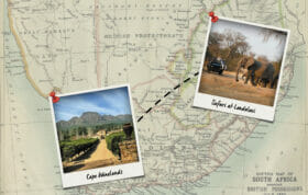 Winelands Blog Banner