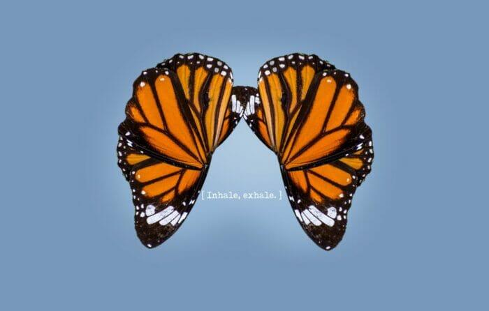 breath work butterfly