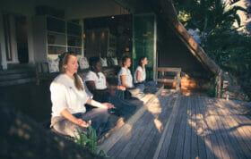 Healing House Meditation A Rtichie Londolozi 3440
