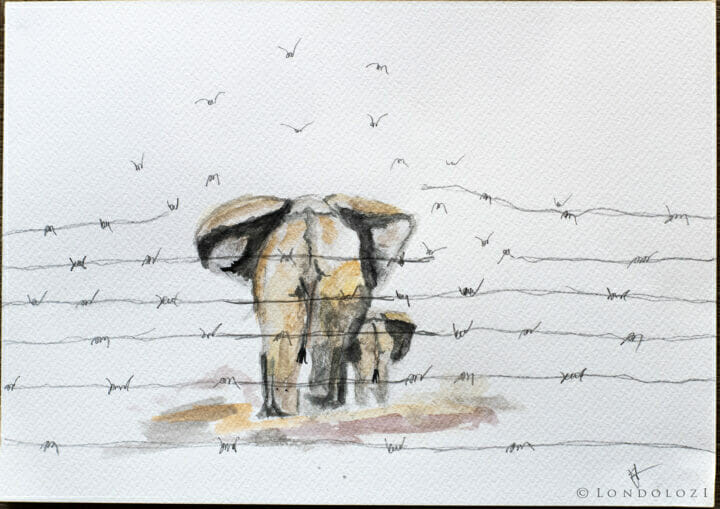 Kirsty's Artwork, 2021. Dsc 3840