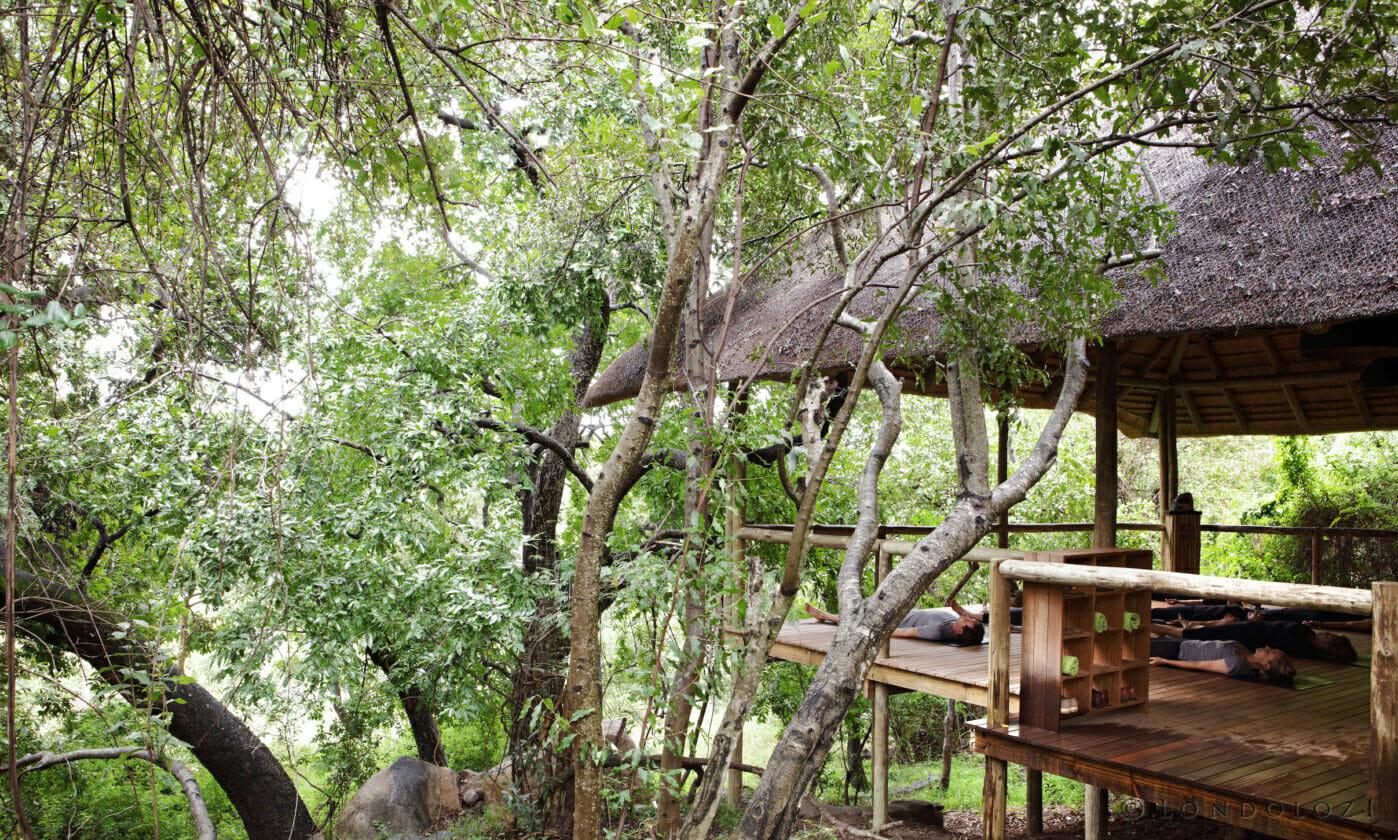 The Londolozi Yoga Deck