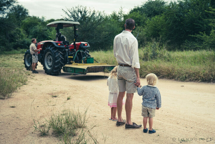 Londolozi Easter 2021 A Ritchie 9301