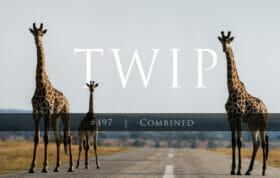 TWIP #497