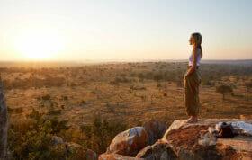 Rewilding at Londolozi Game Reserve