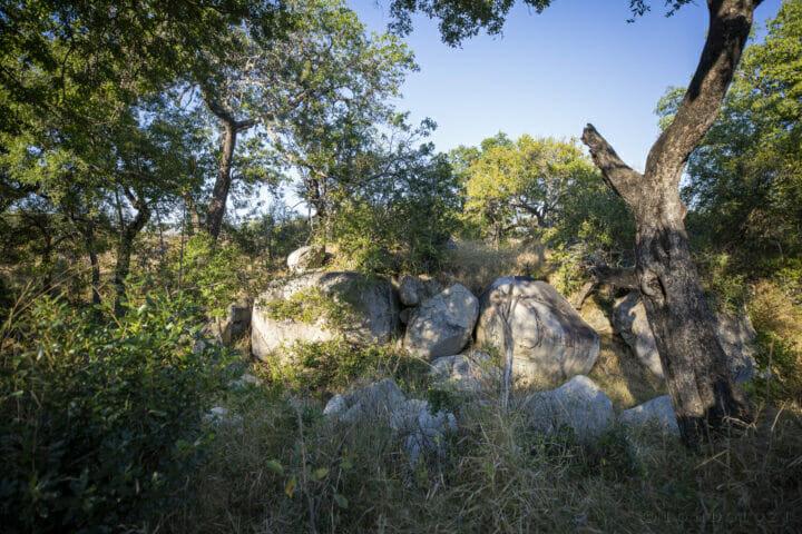 SDZ Mhangeni Double crossing boulders