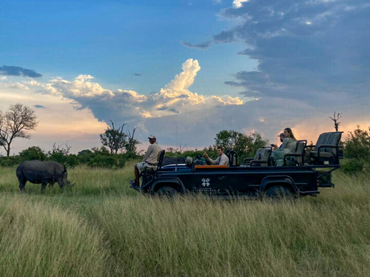Trevor With Rhino