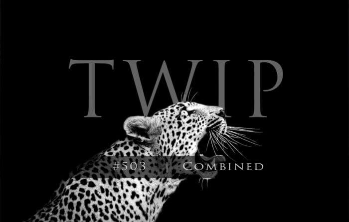 Twip #503
