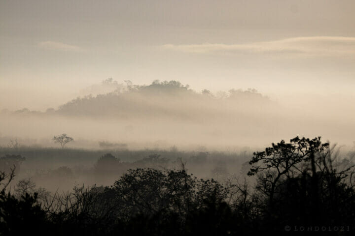 Ns Misty Sunrise Koppie
