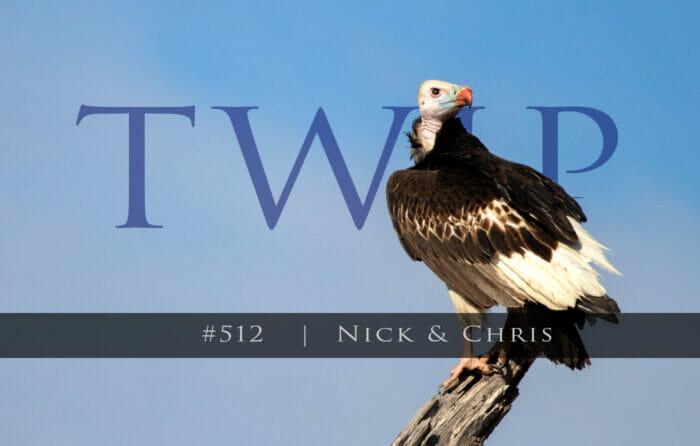 Twip#512